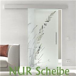 Glasschiebetür Scheibe Design Gräser Glas ESG in 8 mm